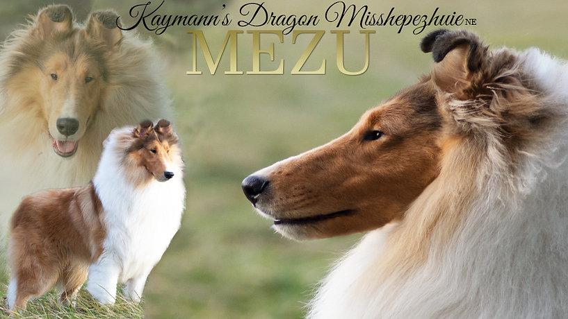 Mezu- 13months-3.jpg