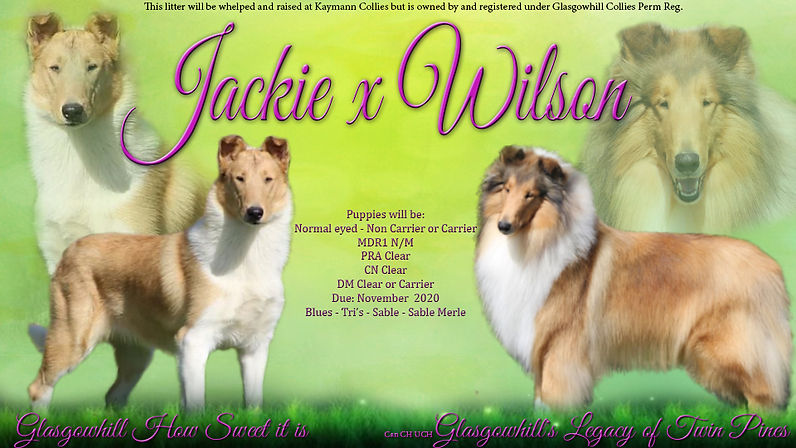 Jackie x Wilson.jpg