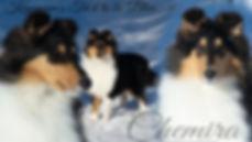 Chemira -  6 Months.jpg