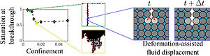 Borgman_Holtzman_2020_graphical_abstrct.