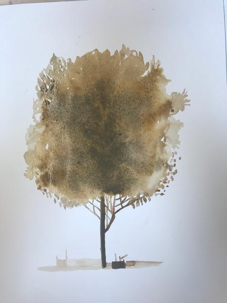 Fall Watercolor Tree