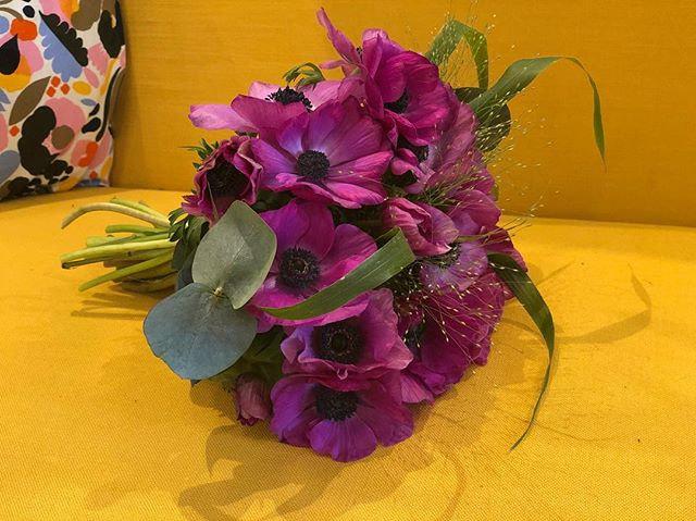 Bouquet d'anémones, fleurs de saison