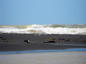 kiritehere beach [1024x768].jpg