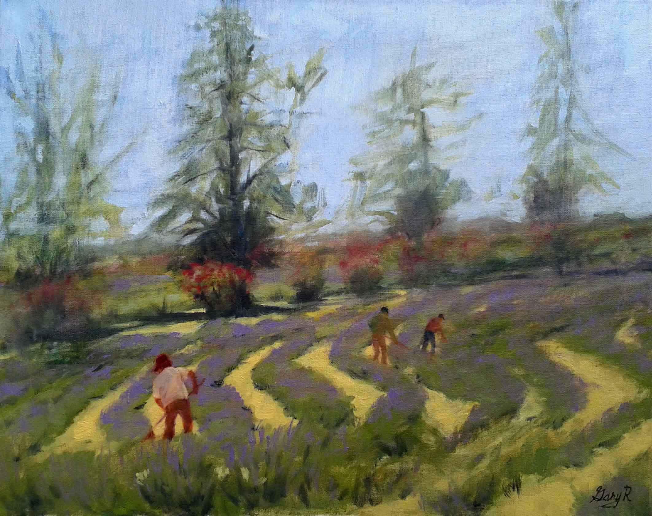 "Gary Rainsbarger / ""Lavender Field Tenders"" / Oil / 20x16 / $250"