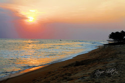 "Joyce Shelton / ""Sweet Sunset"" / Fine Art Photography / 16x24 / $85"