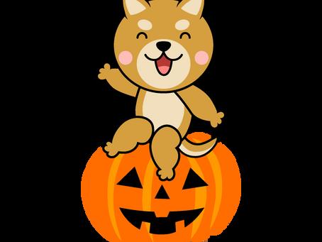 10/18 Halloween撮影会