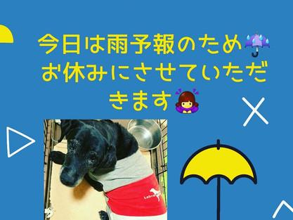 ☔本日雨天のためお休みさせていただきます🙇♀️💦💦
