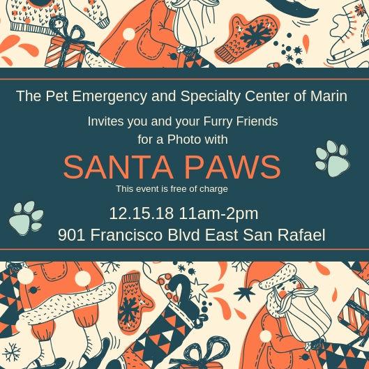 Santa Paws (1).jpg