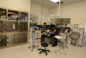 Annex Treatment Room