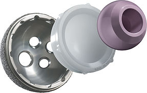 Hip replacement bearings.jpg