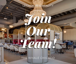 Host, Server, Bar Tender Needed! (Paid) - The Whale