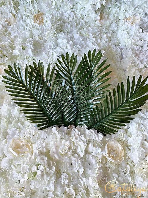 Feuille de palmier x 5