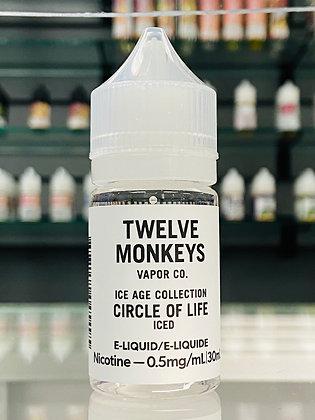 TWELVE MONKEYS - CIRCLE OF LIFE ICED - 30ML
