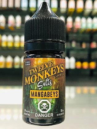 TWELVE MONKEYS SALTS - MANGABEYS