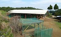 ピッチング練習場