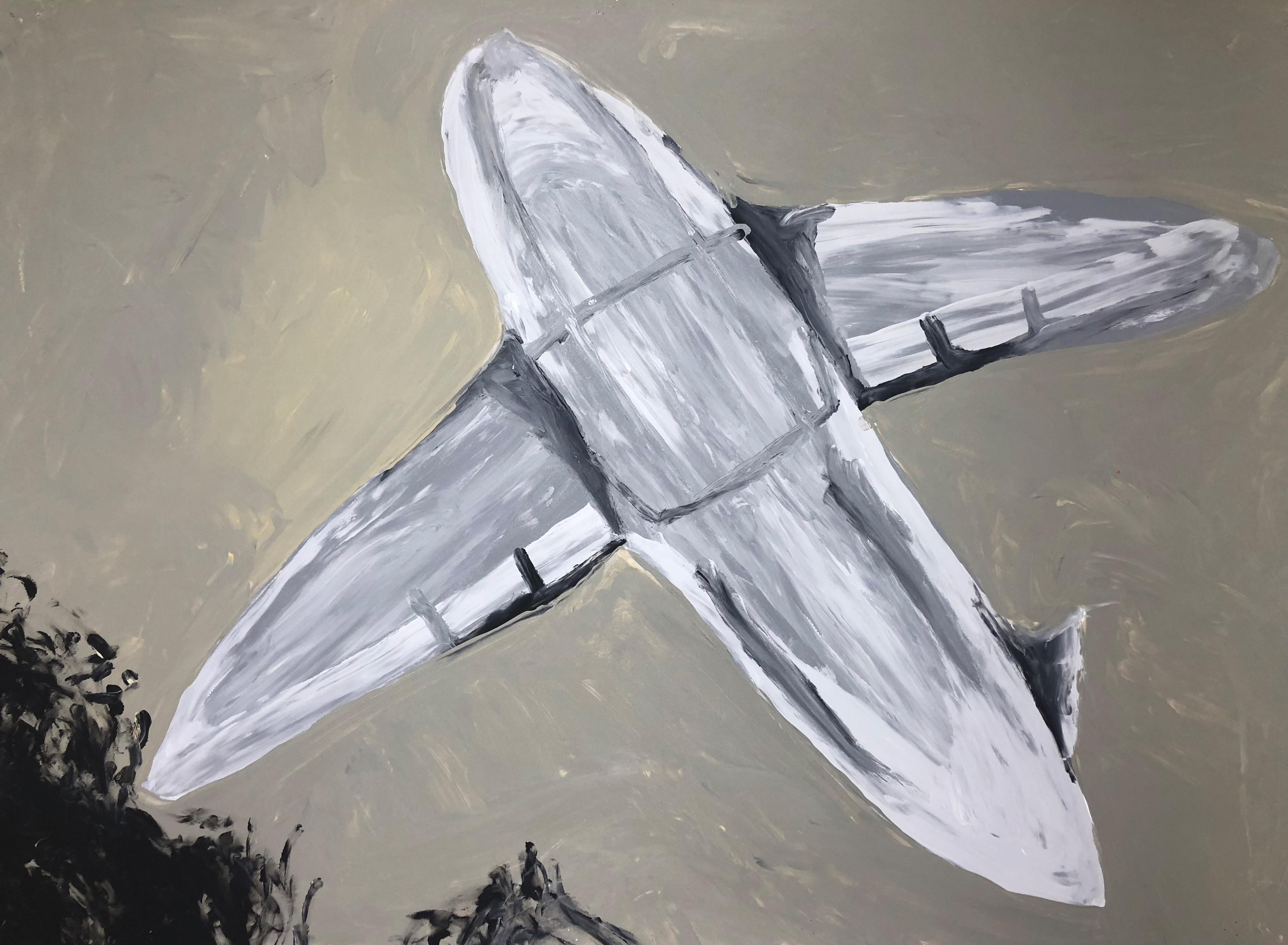 Flugzeug Traum