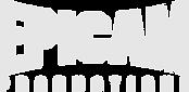 Epicam-Logo-2021.png