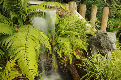 Bear & Fountain.JPG