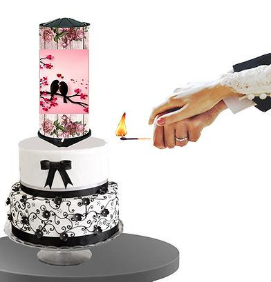 TB Foto Hochzeit4.jpg