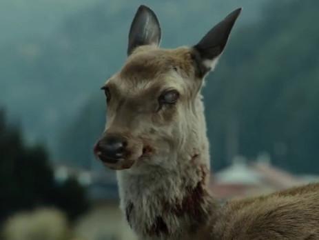 """""""The walking deer"""""""