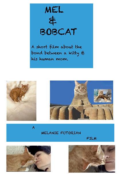 Mel & Bobcat Blue:White  Poster.jpg