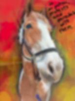 horsie  with writing2.jpg