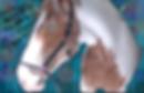 horse 21 close eyes  2 copy 3.png