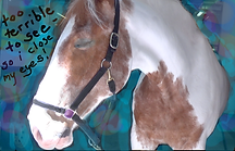horse 21 close eyes  2 copy 3.png