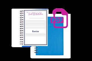 PDF Workbook Images.png