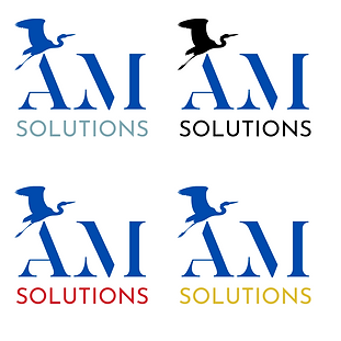 AM solutions P15.png