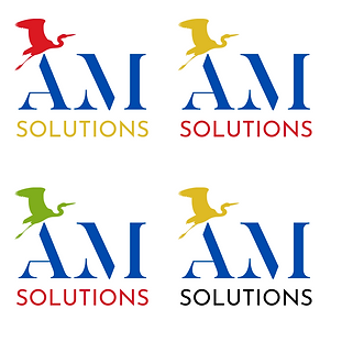 AM solutions P16.png