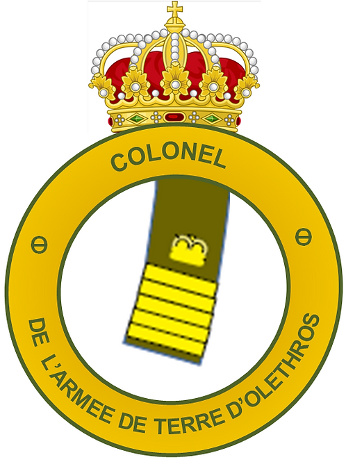 Diplôme de Colonel (Terre)