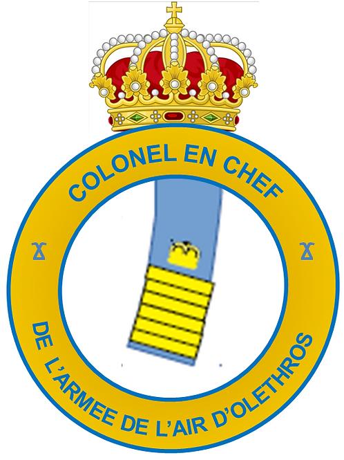 Diplôme de Colonel-en-Chef (Air)