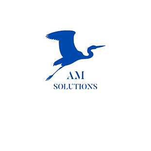 AM solutions P81.png