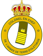 Colonel en Chef Terre.png