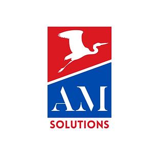 AM solutions AP couleur transition.png
