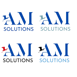 AM solutions P13.png