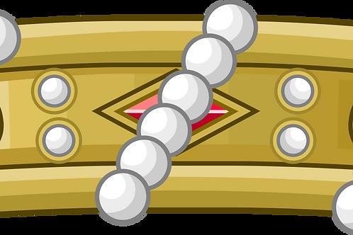 Diplôme armorié fait main de Chevalier