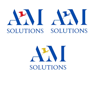 AM solutions P17.png