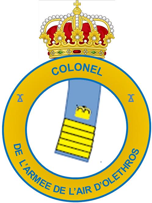 Grade de Colonel (Air Interarmées)