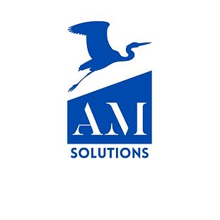 AM solutions AP bleu transition.png