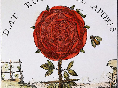 Rosa+Croce e Rosicruciani
