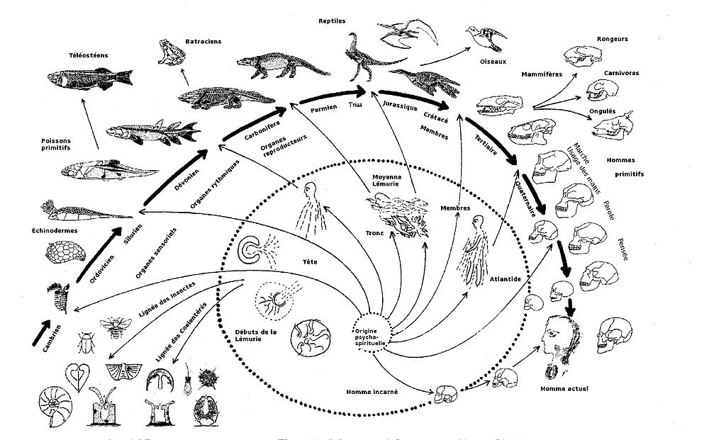 L'evoluzione spirituale e materiale: la spirale interna mostra l'evoluzione spirituale dell'uomo, quella esterna l'evoluzione materiale. Gli animali vengono progressivamente espulsi dall'essere umano.