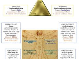 Schema Costituzione occulta dell'essere umano