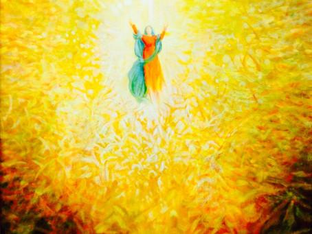15 Agosto – Assunzione di Maria – Ferragosto