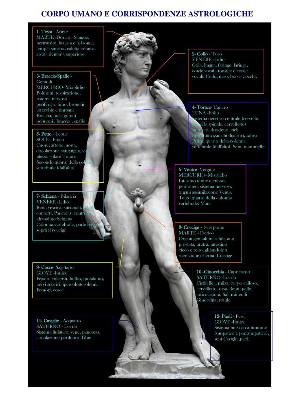 David organi e pianeti