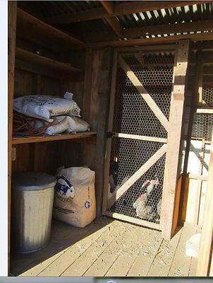 Hen House at Root Cellar Farm