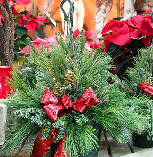 Fresh Christmas Baskets and Containers