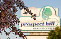 prospect-hill-gc-5-16-09-28_