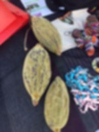 Qui va deviner le nom de cette plante _